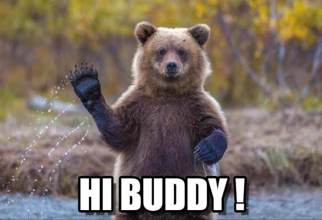 Bear Waving Meme