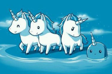 Digital Marketing Courses - Unicorns
