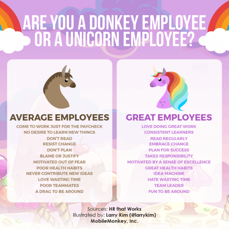Two Types oaf Employees Are you a Donkey or Unicorn