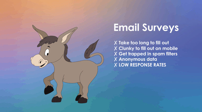 email survey donkeys