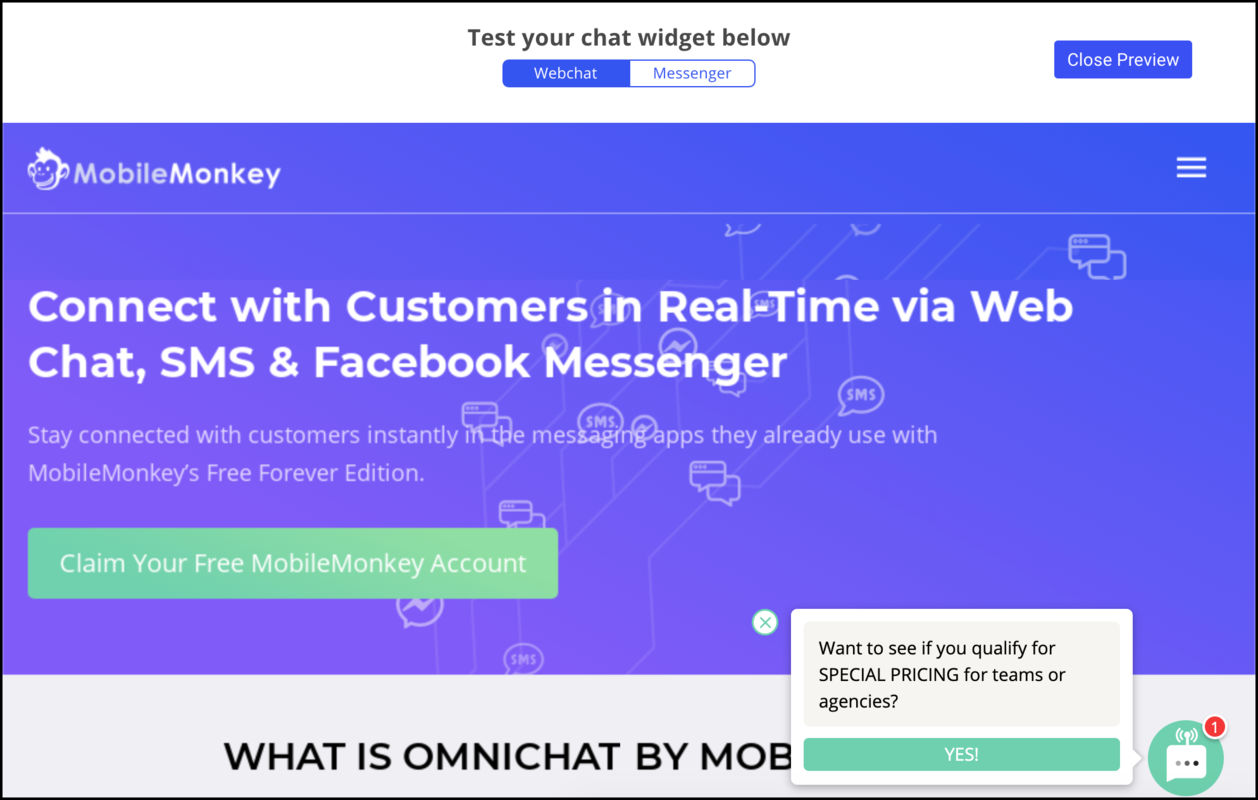 customer chat widget preview tool