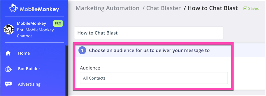 choose chat blast audience