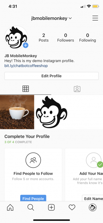 messenger chatbot for instagram: insta profile with link in bio
