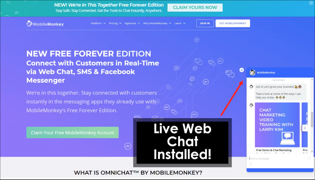 live chat widget installed