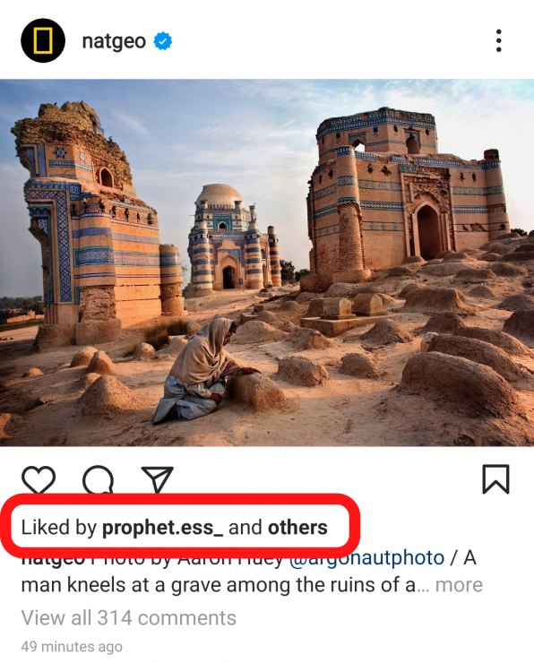 An image of what hidden likes on Instagram look like.